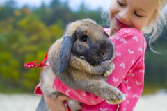 Portrait of beautiful girl with rabbit Royalty Free Stock Images