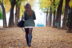 Portrait of beautiful girl walking in autumn. Royalty Free Stock Photos