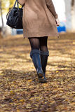 Portrait of beautiful girl walking in autumn. Royalty Free Stock Image