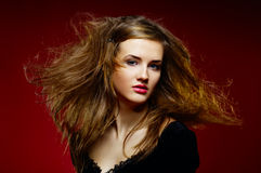 Portrait of the beautiful girl a wild hair Royalty Free Stock Image