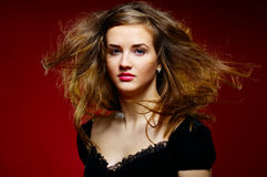Portrait of the beautiful girl a wild hair. Portrait of the beautiful lady a wild hair stock photos
