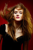 Portrait of the beautiful girl a wild hair Royalty Free Stock Images