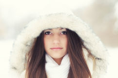 Portrait of the beautiful girl in winter. Landscape Stock Images