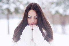 Portrait of the beautiful girl in winter Stock Image