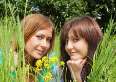 Portrait of the beautiful girls Royalty Free Stock Images