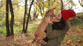 Beautiful hipster girl holding dog in autumn park stock video footage