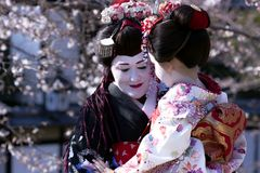 Portrait of beautiful lady in Maiko kimono dress Royalty Free Stock Images