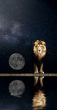 Portrait of a Beautiful lion, lion in the starry night moon Royalty Free Stock Photography
