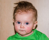 Portrait of a beautiful little baby girl. 2015 Royalty Free Stock Photos