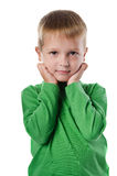 Portrait of beautiful little boy Royalty Free Stock Photos