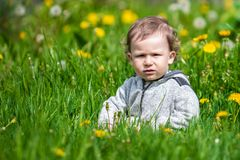 Portrait of a little boy. Child outdoors Royalty Free Stock Photo