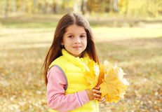 Portrait beautiful little girl child with yellow maple leafs in autumn Stock Photo