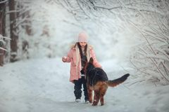 Portrait of beautiful Little girl and puppy at winter forest. Portrait of beautiful Little girl and german shepherd puppy at winter forest stock images