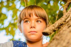 Portrait of a beautiful little girl. Little girl is looking from behind the tree Stock Photography