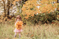 Portrait of beautiful little girl with maple leaves Stock Photos