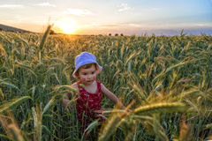 Portrait of a beautiful little girl playing in a wheat field Stock Photos