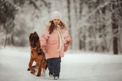 Portrait of beautiful Little girl and puppy at winter forest. Portrait of beautiful Little girl and german shepherd puppy at winter forest royalty free stock photos