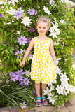 Portrait of a beautiful little girl in summer dress, clematis fl Stock Photography