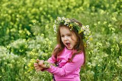Portrait of a beautiful little girl in a wreath of daisies stock photos