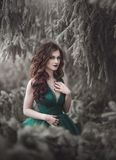 Portrait A beautiful long-haired girl in an emerald fairy dress walks in the winter forest. Fairy tale fantasy story. stock photo