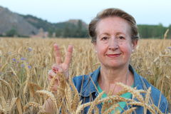 Portrait of a beautiful mature blond smiling woman showing peace sign gesture in a gorgeous wheat field Stock Images