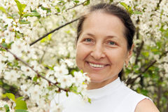 Portrait of beautiful mature woman. Beautiful mature woman on background of the cherry blossoms stock photography