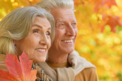 Portrait of a beautiful middle-aged couple in the autumn park Royalty Free Stock Photo