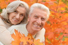 Portrait of a beautiful middle-aged couple in the autumn park Stock Images