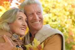 Portrait of a beautiful middle-aged couple in the autumn park Royalty Free Stock Image