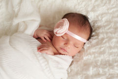 Portrait of a Beautiful Newborn Baby Girl. Headshot of a sleeping 8 day old newborn baby girl wearing a pink flower headband. She is wrapped in white gauzy Stock Photo
