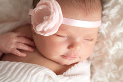Portrait of a Beautiful Newborn Baby Girl. Headshot of a sleeping 8 day old newborn baby girl wearing a pink flower headband. She is wrapped in white gauzy Stock Photography