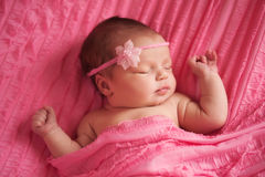 Portrait of a Beautiful Newborn Baby Girl. An overhead view of a sleeping 8 day old newborn baby girl wearing a pink flower headband. She is wrapped in pink Royalty Free Stock Images