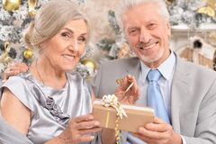 Portrait of a beautiful old couple with Christmas present stock photos