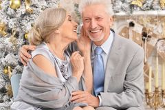 Portrait of a beautiful old couple with Christmas present royalty free stock photos