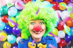 Portrait of beautiful party woman in wig and glasses Carneval.  stock image
