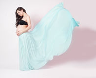 Portrait of a beautiful pregnant woman in  chiffon shawl Royalty Free Stock Photography