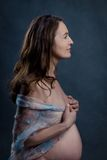 Portrait of beautiful pregnant woman in studio Stock Photography