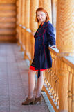 Portrait of beautiful red-haired young woman Royalty Free Stock Image