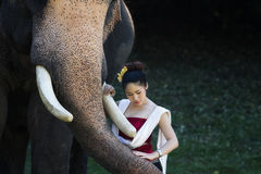 Portrait of Beautiful rural thai woman wear thai dress with elephant in Chiang Mai Royalty Free Stock Photography