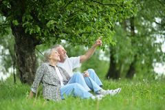 Portrait of a beautiful senior couple in the park royalty free stock photos