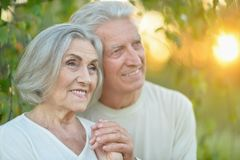 Portrait of beautiful senior couple relaxing in the spring park royalty free stock photos