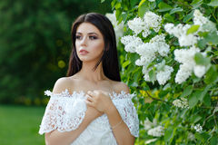 Portrait of beautiful sensual brunette girl in white dress in th Stock Image