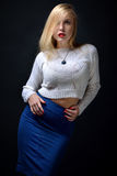 Portrait of the beautiful sexy blonde woman,. She is posing in studio with dark background Stock Photos