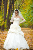 Portrait of a beautiful smiling bride Royalty Free Stock Photography
