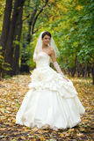 Portrait of a beautiful smiling bride Stock Photos