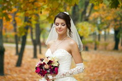 Portrait of a beautiful smiling bride Stock Images