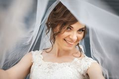 Portrait of beautiful bride with veil over her face. Portrait of beautiful smiling bride with white veil over her face. Concept of young gorgeous bride Royalty Free Stock Photo