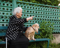 Portrait of beautiful smiling old woman with a dog Royalty Free Stock Photos