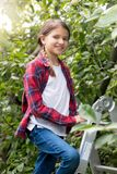 Portrait of beautiful smiling teenage girl standing on top of stepladder at orchard. Beautiful smiling teenage girl standing on top of stepladder at orchard Stock Photography