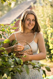Portrait of of beautiful smiling woman holding basket with apple Royalty Free Stock Images